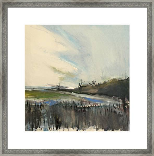 Ossabaw Early Morning Framed Print