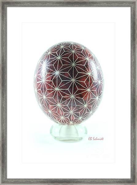 Ostrich Egg Od001 Framed Print