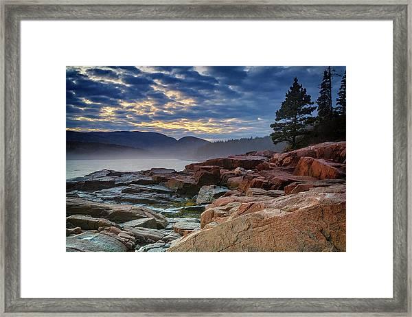 Otter Cove In The Mist Framed Print