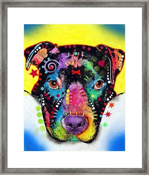 Otter Pitbull Framed Print