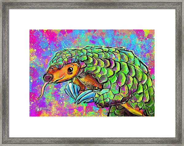 Pangolin Framed Print