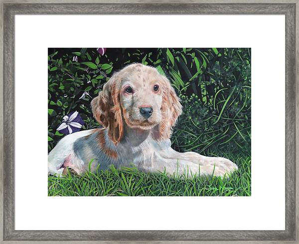 Our Archie Framed Print