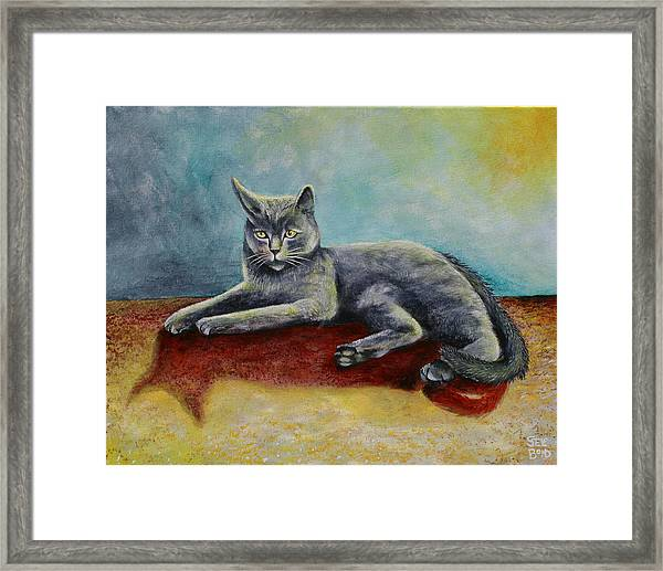 Our Cat Booty Framed Print