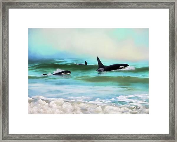 Our Family - Orca Whale Art Framed Print