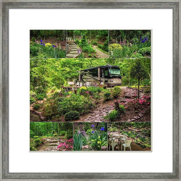 Framed Print featuring the photograph Our Woods In Nc by Claudia Abbott
