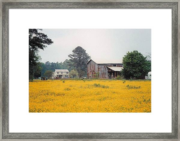 Out In The Country Framed Print by Robert Boyette