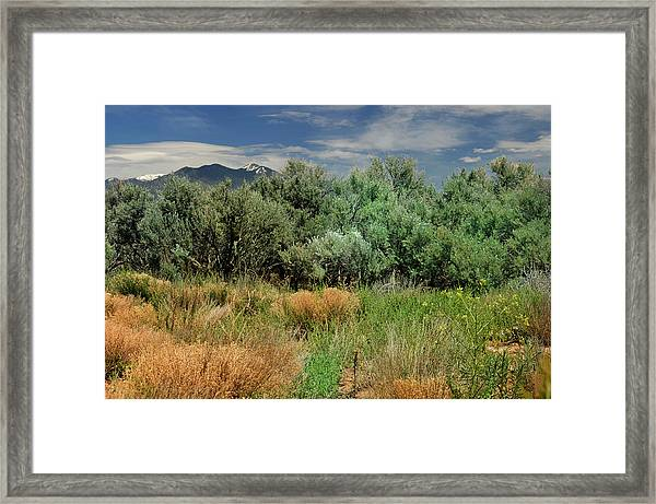 Out On The Mesa 1 Framed Print