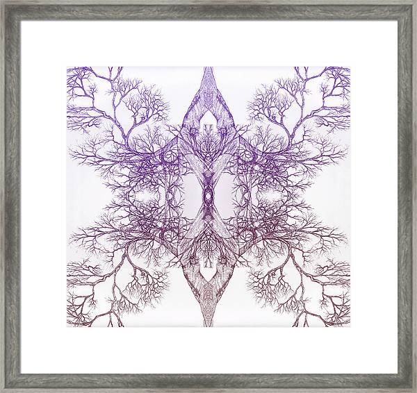 Outward Tree 9 Hybrid 4 Framed Print