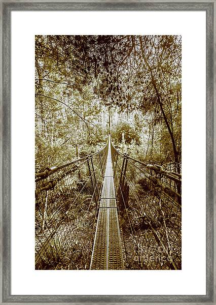 Over Australian Native Forests Framed Print