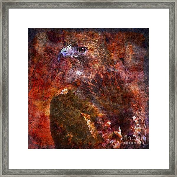 Over My Shoulder 2015 Framed Print