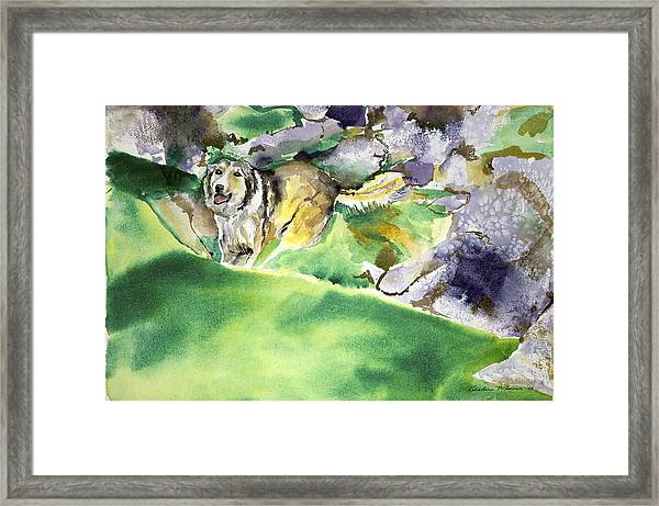 Over The Hill With Shep Framed Print