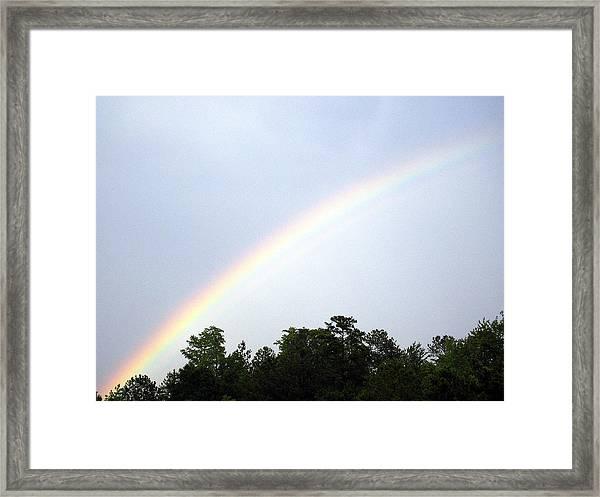 Over The Rainbow Framed Print by Tina Antoniades