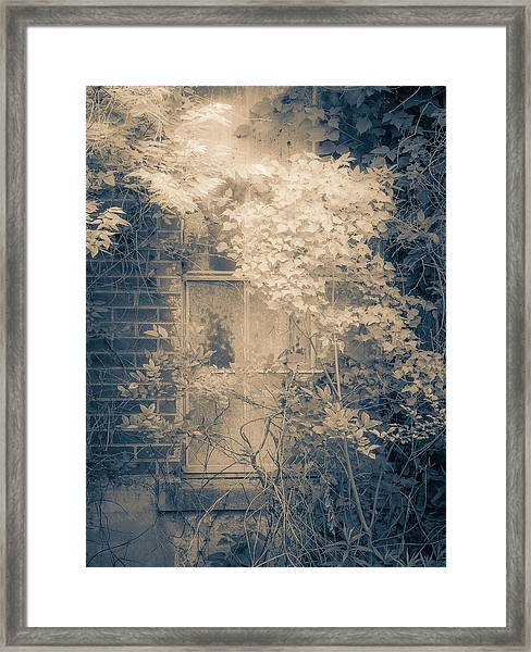 Overgrowth On Abandoned Pumping Station Framed Print