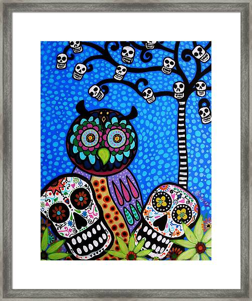Owl And Sugar Day Of The Dead Framed Print