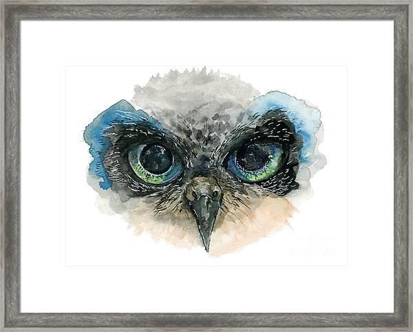 Owl Eyes Framed Print