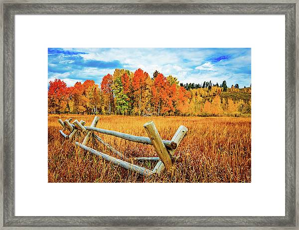 Oxbow Bend Fall Color Framed Print