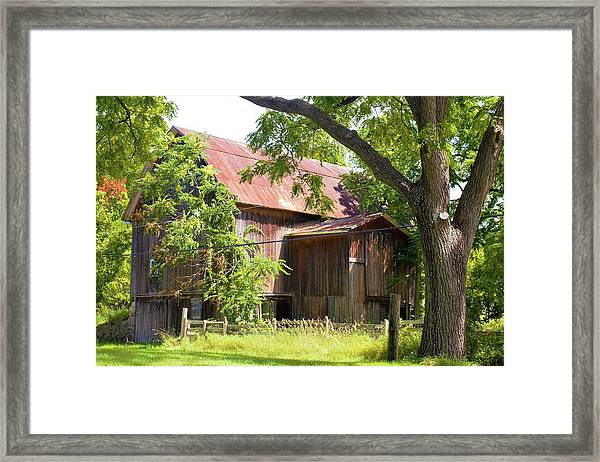 0036 - Oxford Red II Framed Print
