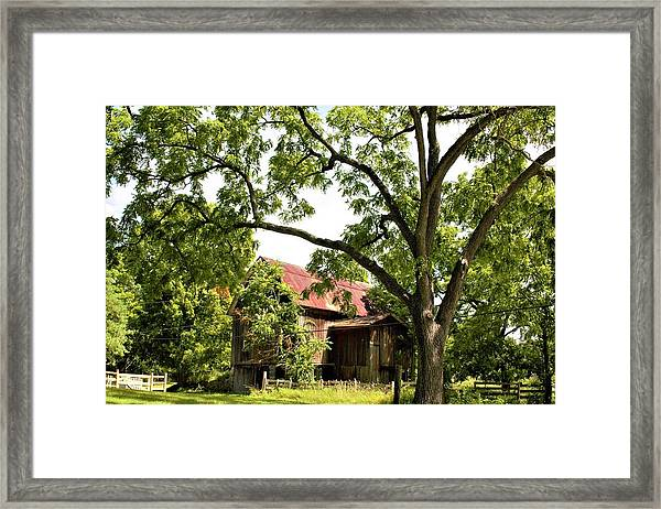 0037 - Oxford Red IIi Framed Print