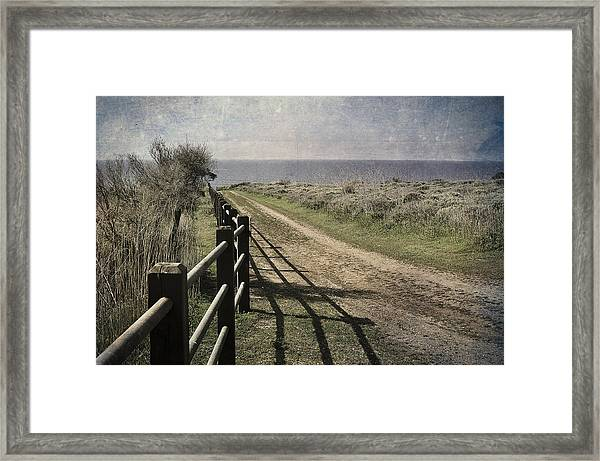 Pacific Path Framed Print