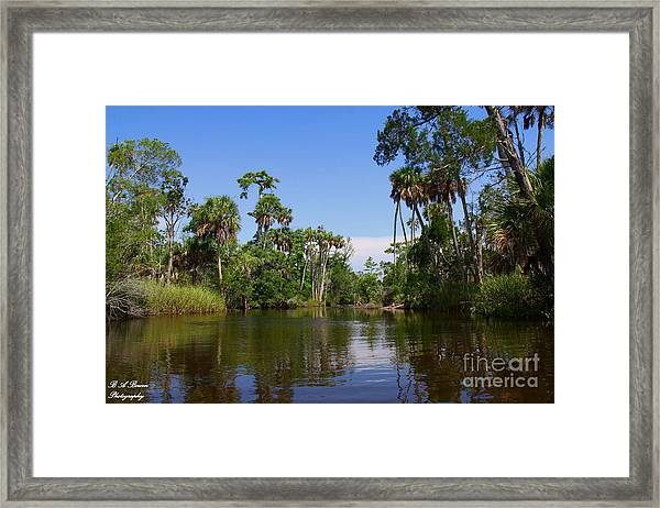 Paddling Otter Creek Framed Print