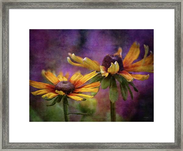 Painted By The Sun 2757 Idp_2 Framed Print