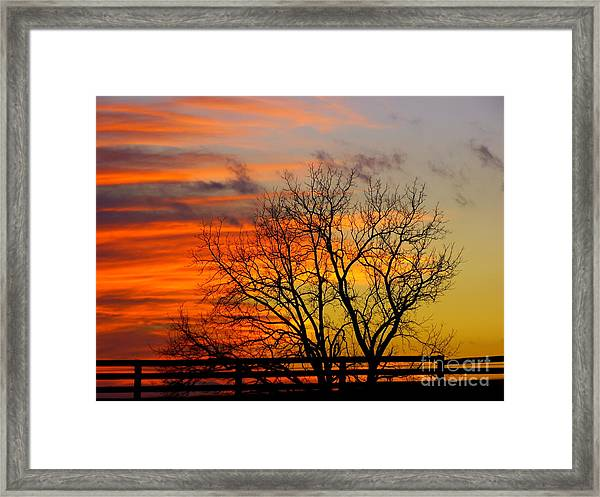 Painted By The Sun Framed Print