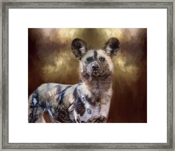 Painted Dog Portrait II Framed Print