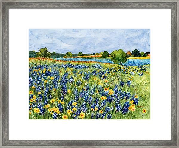 Painted Hills Framed Print