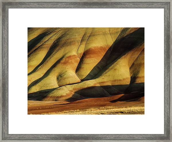 Painted In Gold Framed Print