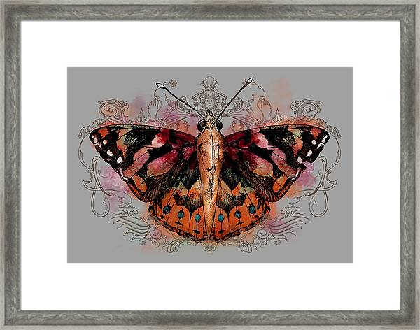 Painted Lady II Framed Print