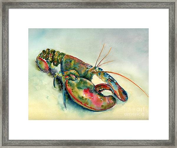 Painted Lobster Framed Print