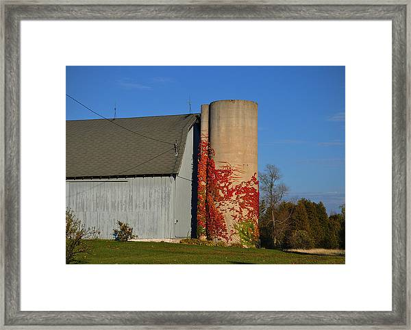 Painted Silo Framed Print