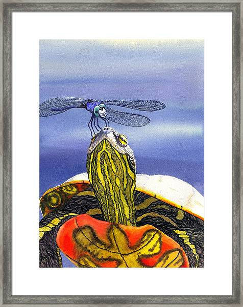 Painted Turtle And Dragonfly Framed Print by Catherine G McElroy