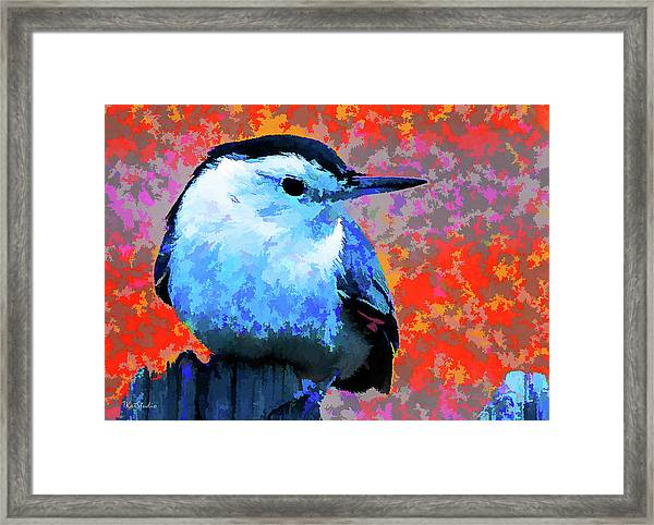 Painted White Breasted Nuthatch Framed Print