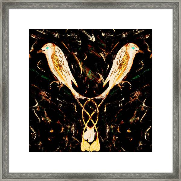 Pale Drongos Framed Print
