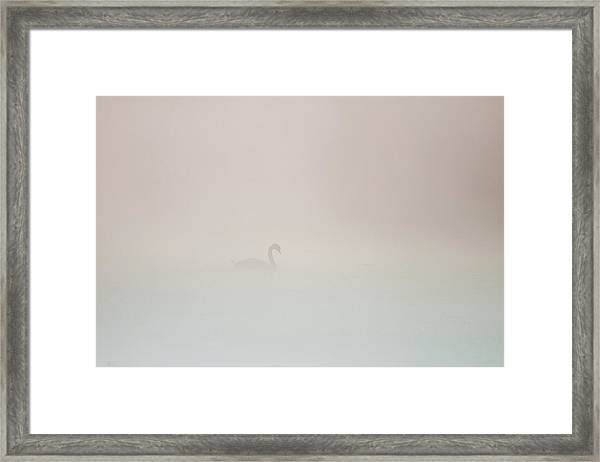 Pale Outline In The Fog Framed Print