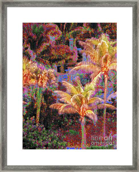Palm 1008 Framed Print