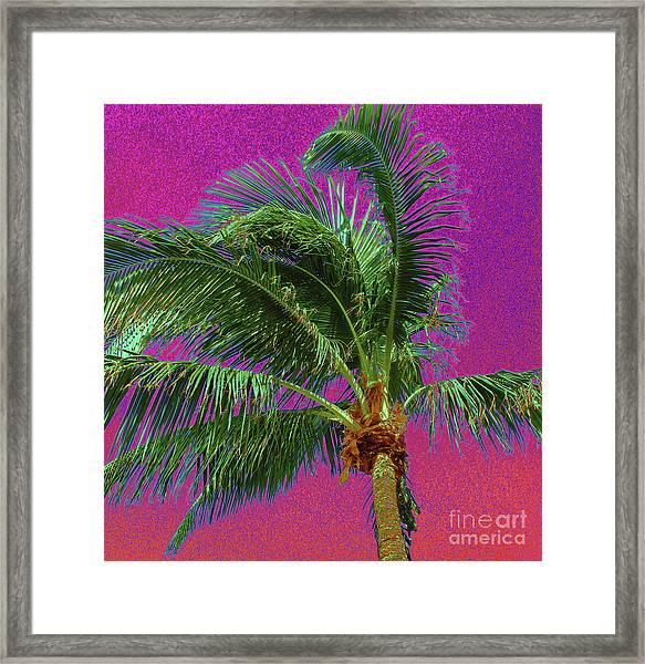 Palm 1012 Framed Print