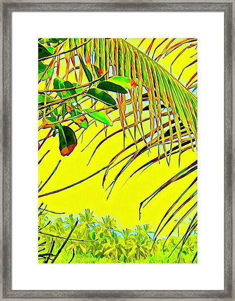 Palm Fragment In Yellow Framed Print