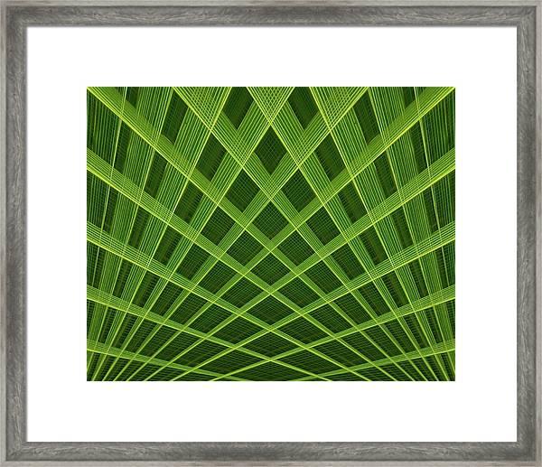 Palm Leaf Composite Framed Print