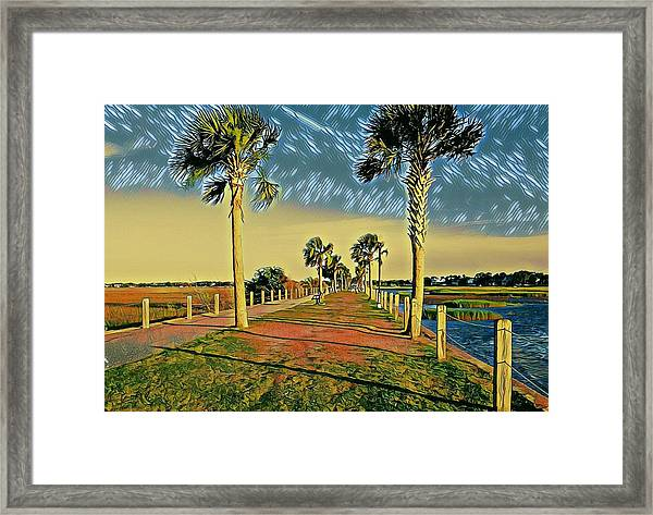 Palm Parkway Framed Print