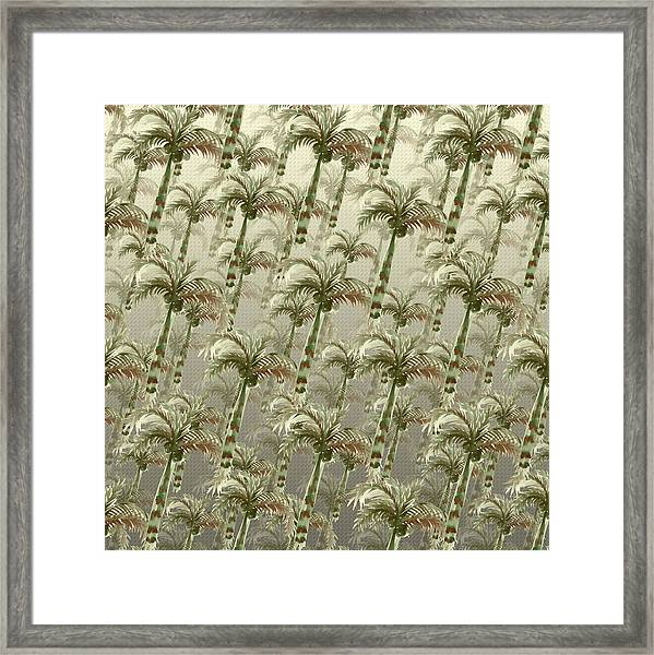 Palm Tree Grove Framed Print