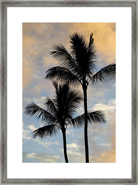 Palm Tree Sunset Hawaii Framed Print