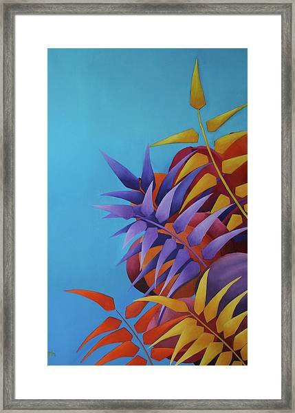 Palm Tree With Coconuts 2 Framed Print