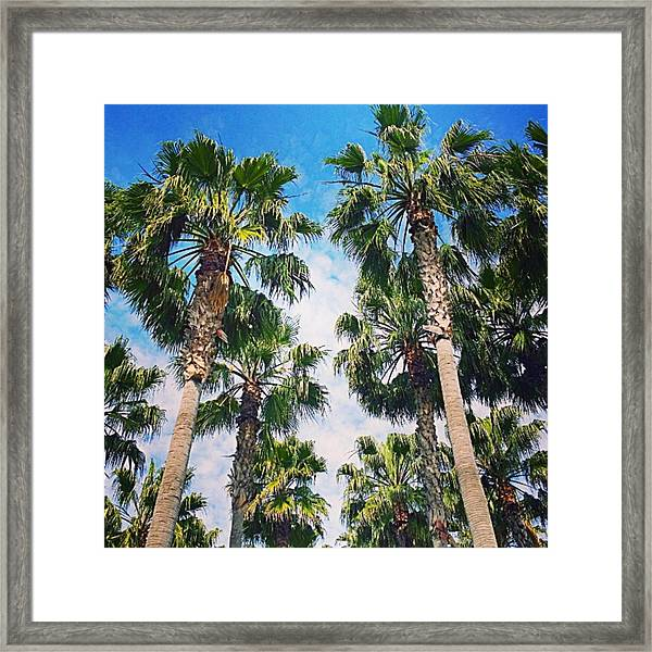 #palm #trees Just Make Me #smile Framed Print