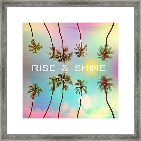 Palm Trees Framed Print
