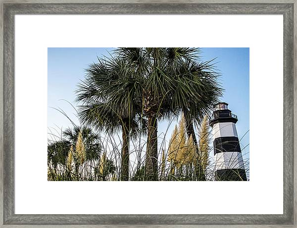 Palms At Lightkeepers Framed Print