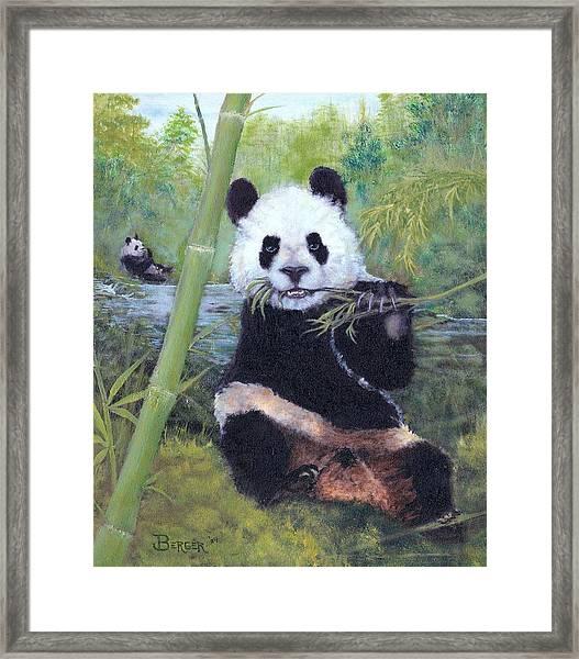 Panda Buffet Framed Print