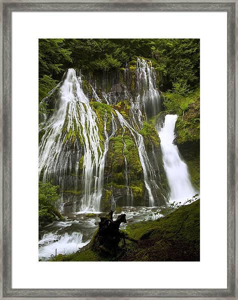 Panther Creek Falls Framed Print