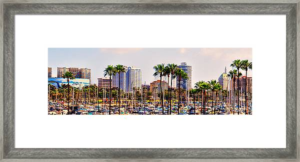Parking And Palms In Long Beach Framed Print